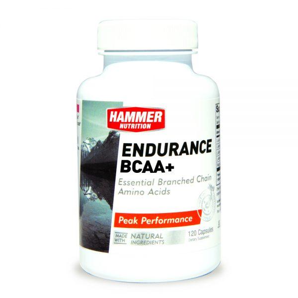 Endurance BCAA+ 12010000x